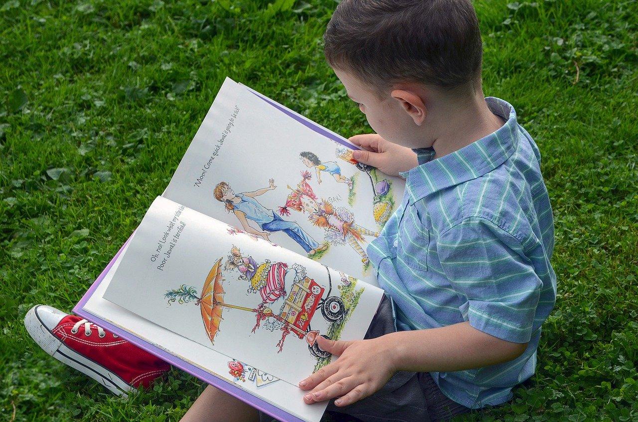 Ein Junge schaut sich ein Bilderbuch an