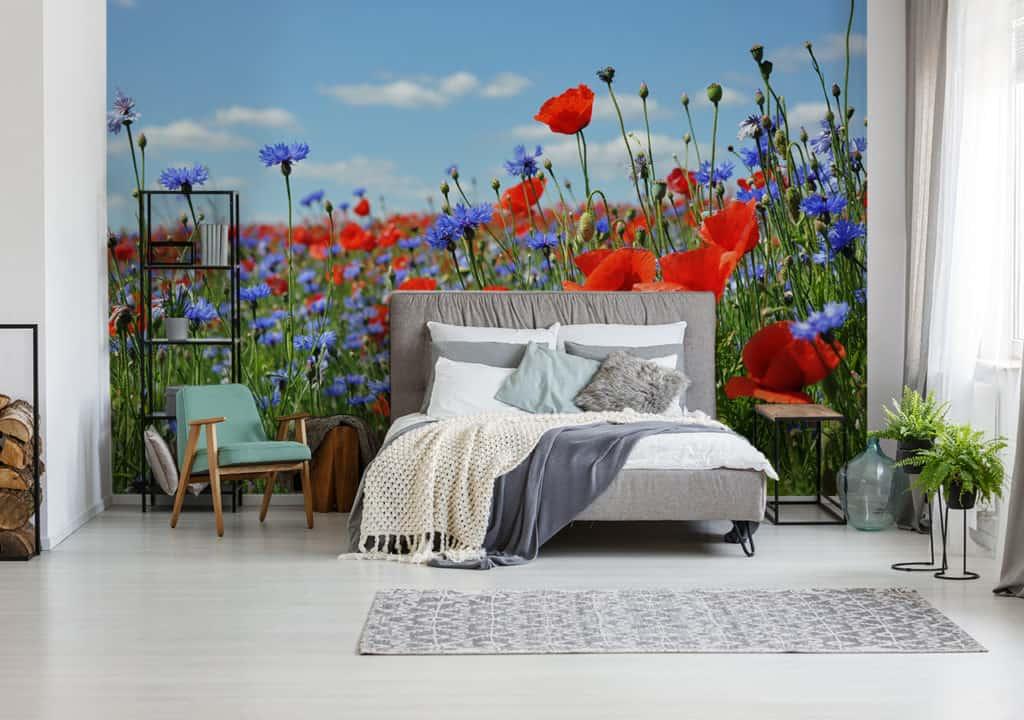 Fototapete Blumenwiese rot-blau im Schlafzimmer