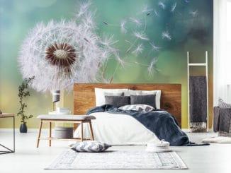 Fototapete fluffige Pusteblume im Schlafzimmer